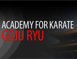 ACADEMY FOR KARATE